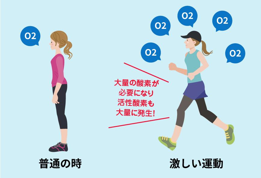激しい運動をすると大量の酸素が必要となり活性酸素も大量に発生